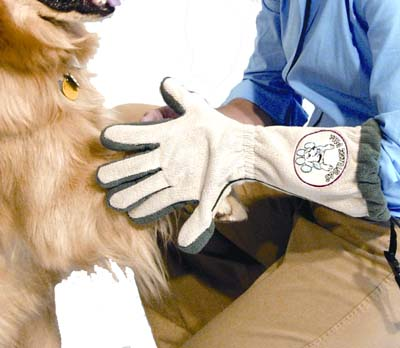 Spotless Paw™ - Dog Paw Cleaning Glove