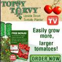 Topsy Turvy Tomatoe